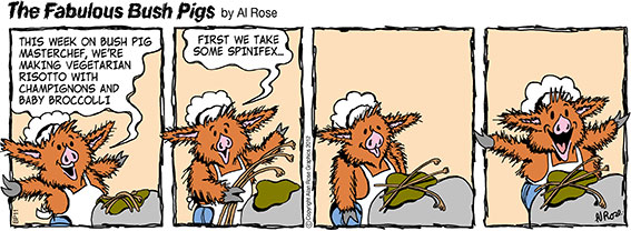 Bush Pig chef makes Spinifex Risotto