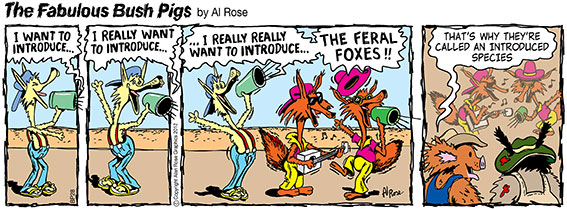 """The band """"The Feral Foxes"""" are introduced 3 times to crowd... Introduced species"""
