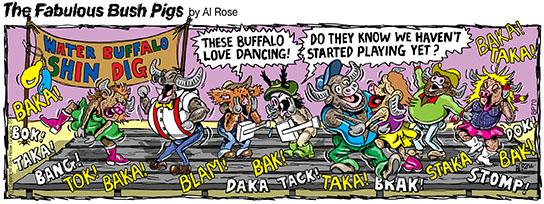 Buffalo dance band hasn't started