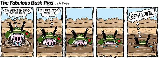 sinks into Bog Hole