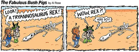 pigs look at Rex
