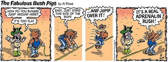 Bungee jump flat