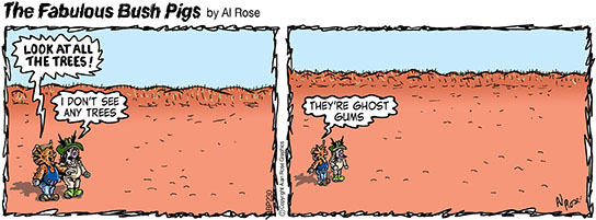 ghost gums
