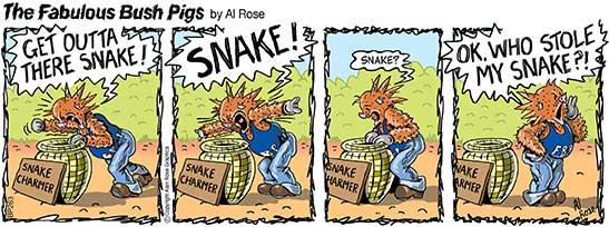 stolen snake