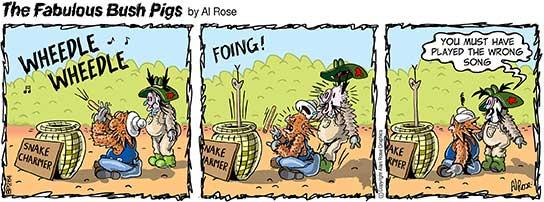 snake goes rigid from snake charmer