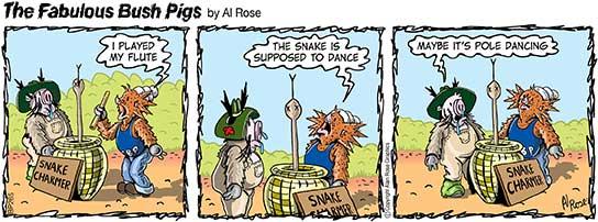 snake charmer makes snake pole dance